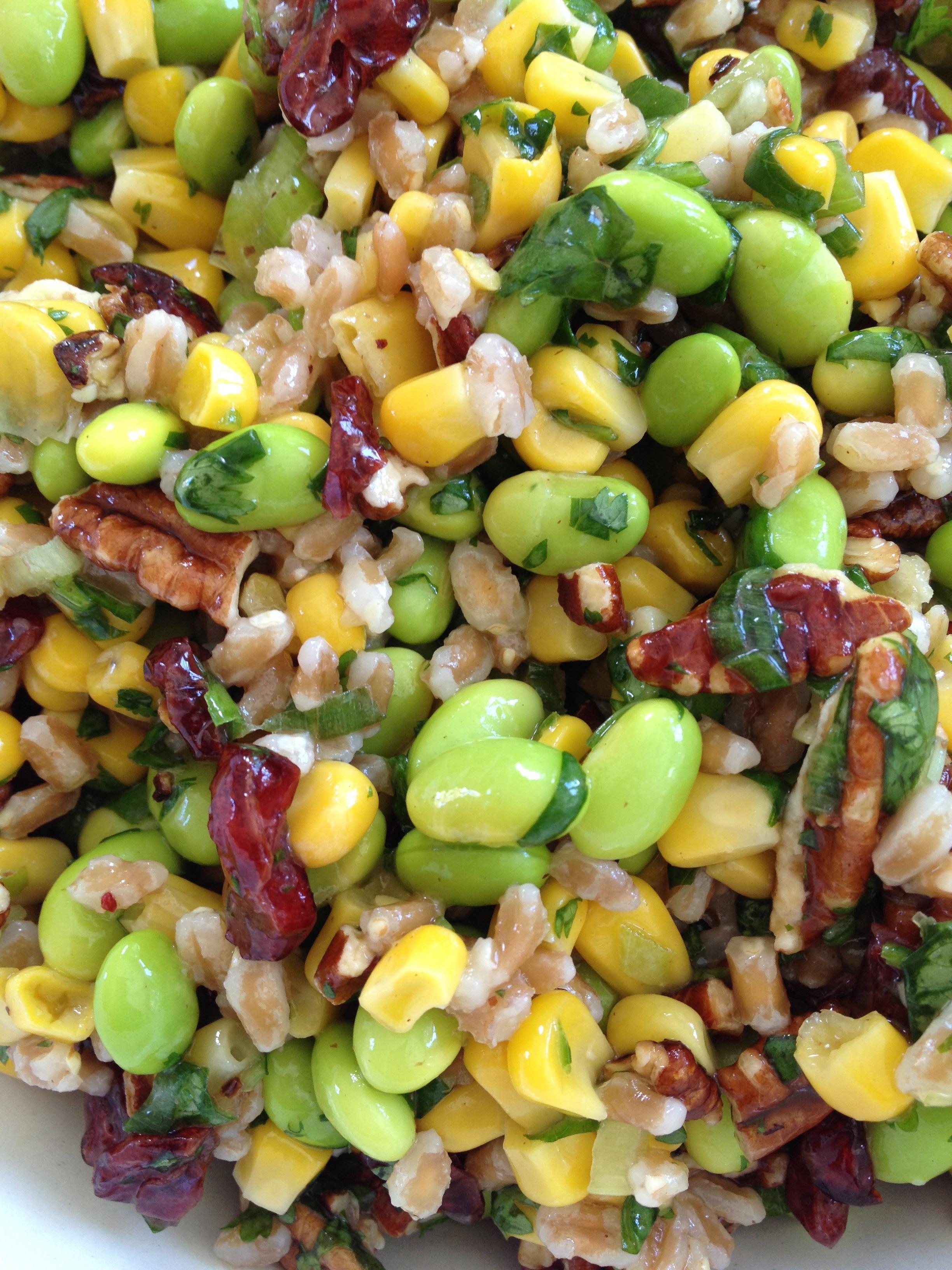... mediterranean farro salad farro salad farro salad summer farro salad