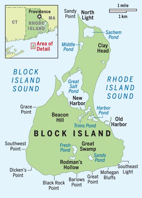BI detail map