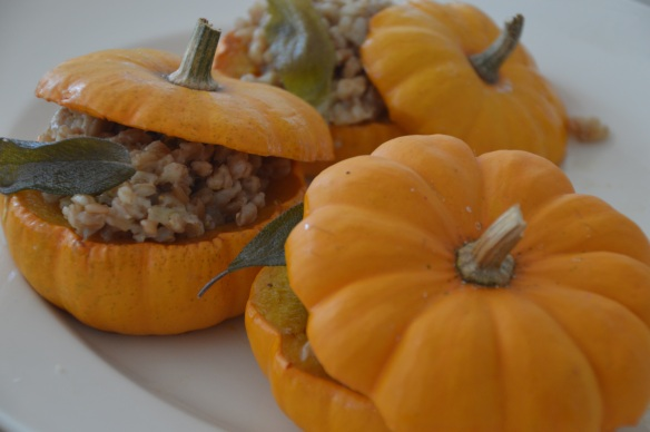 Farro-stuffed mini pumpkins