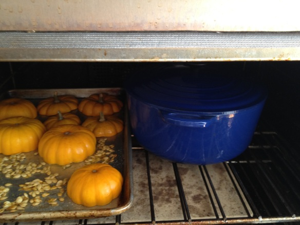 Pumpkins and seeds roasting (while farro pilaf bakes).